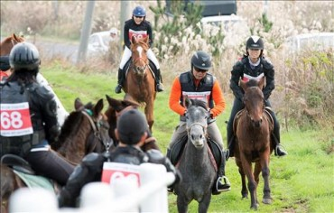 Jeju Horseback Riding Routes Push a Promising New Industry Forward