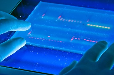 New Database Stores DNA for Use in Criminal Investigations