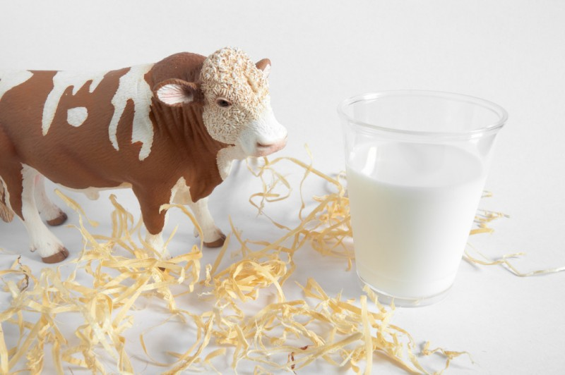 Domestic Dairy Industry Suffers with Popularity of Imported Products