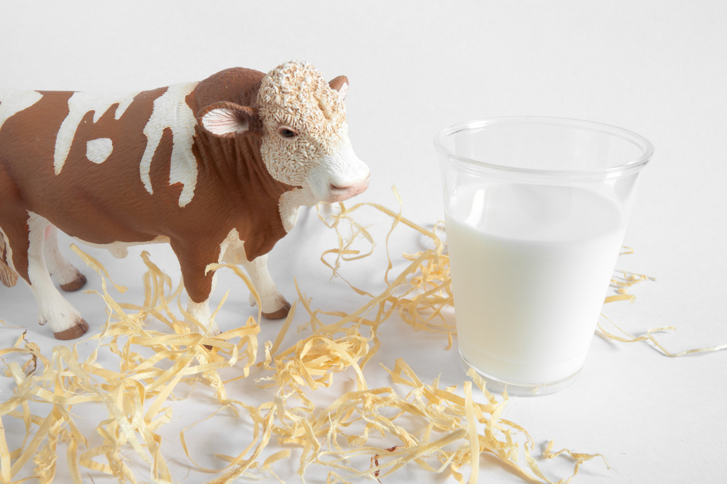 Korea's annual consumption of milk per person has decreased by 13.6 percent, from 30.8kg in 2000 to 26.6kg in 2015. (image: KobizMedia/ Korea Bizwire)