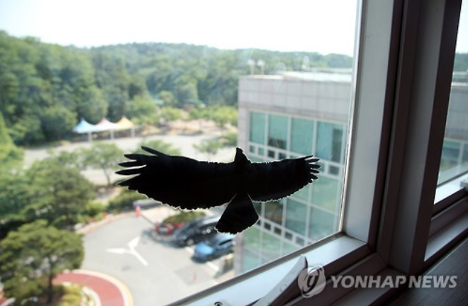 Korea Installing Bird-Savers to Prevent Bird-Window Collisions