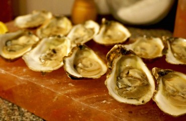 Empty Oyster Shells Help Reduce Sulfur Emissions from Power Plants