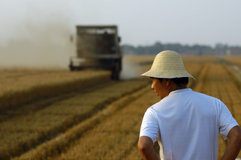 More S. Koreans Go Back to Rural Life in 2015