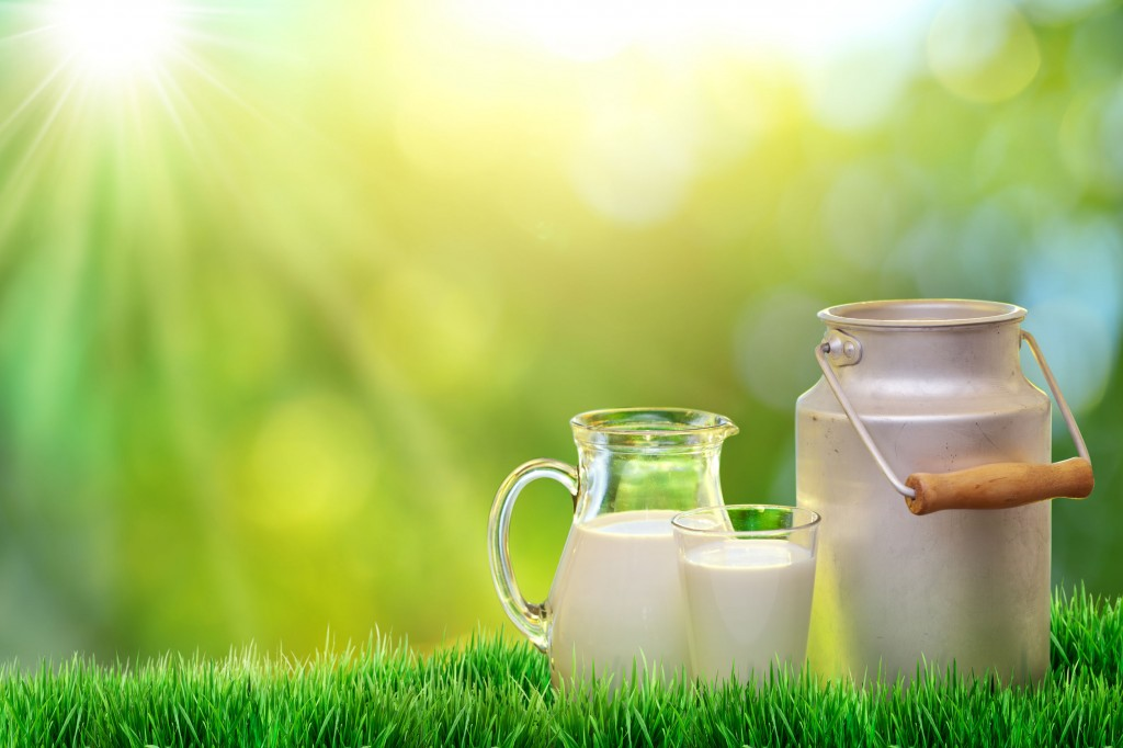 The study results showed that individuals who drank more than half a glass of milk per day (around 101 ㎖) had a 54 percent lower risk of developing colon cancer than those who rarely drank milk at all (less than 29 ㎖). (image credit: Kobiz Media)