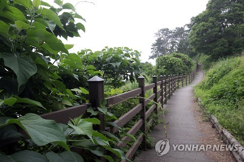 Trekking course in Changwon, the capital city of South Gyeongsang Province.