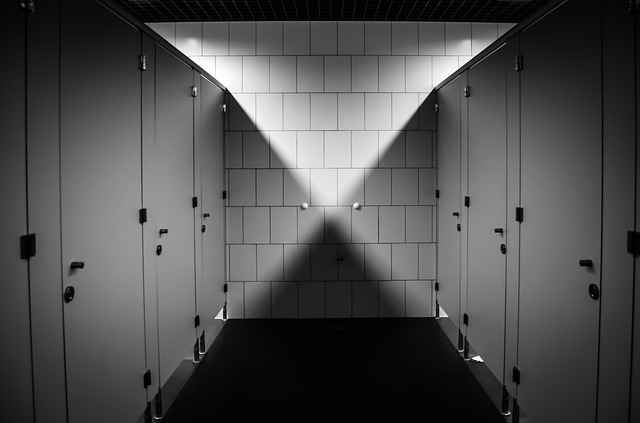 The city of Daejeon is planning to carry forward its comprehensive preventative measures to protect women against crimes at public bathrooms. (image: Pixabay)