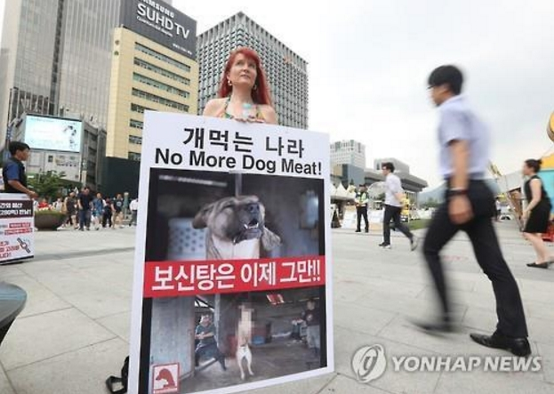 Two British women, Madeline Warren and Lucia Barber, were seen on July 25 protesting against Korean dog meat consumption in Gwanghwamun Square, claiming that they came to Korea to stop the brutal culture. (image: Yonhap)