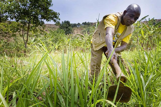 SNU Bringing Agricultural Revolution to Uganda