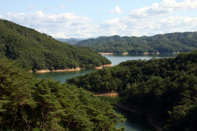South Korea's Longest River Suffers from Pollution and Declining Fish Stocks