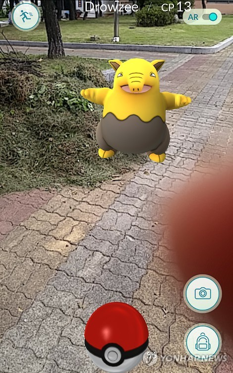 But it wasn't until Tuesday when the news spread across the net that these critters were popping up in various locations in and around Sokcho and Gangwon Province that Koreans realized they might have a chance to play the game. (image: Yonhap)