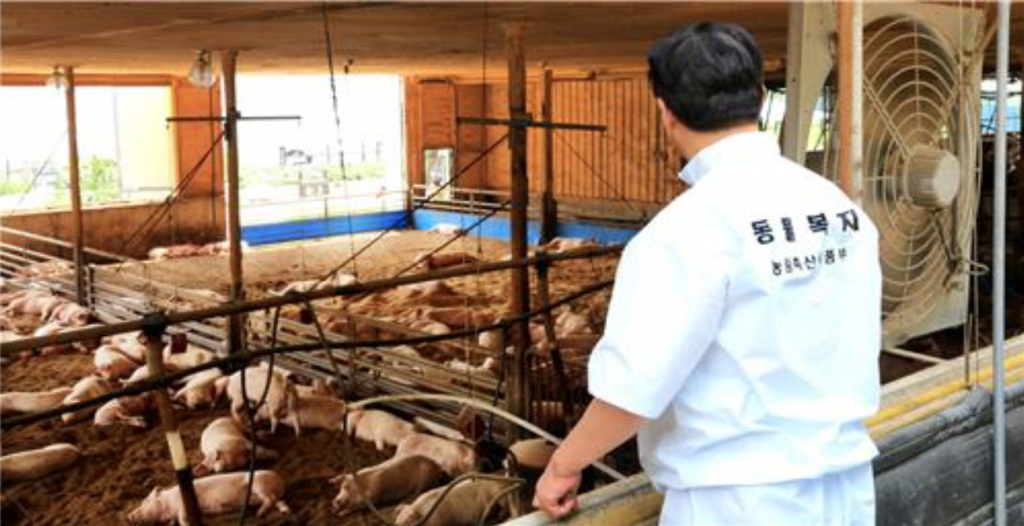 """To be honest, animal welfare is not the easiest path, but it's the path that we believe everyone should take,"" said Mr. Lee Jae-sik, president of the BPFA. (image: Yonhap)"