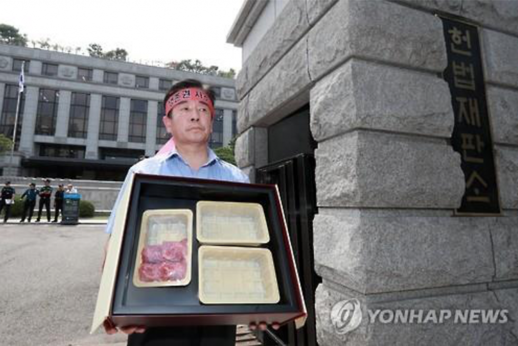A livestock farmer stages a one-man protest in front of the Constitutional Court in Seoul on July 28, 2016, saying that the so-called Kim Young-ran Law banning expensive gifts will destroy domestic livestock farmers. (image: Yonhap)