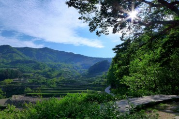 Korea Plans to Sell 'Clean Air' from Jirisan National Park