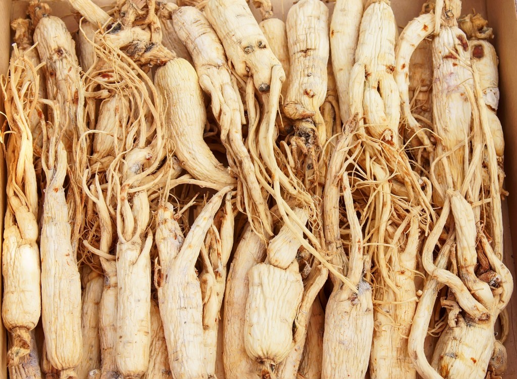 According to the team, subjects who consumed 3 grams of powdered white ginseng every day for 12 weeks scored 48.1 percent lower in the Hamilton Anxiety Rating Scale than those who only took a placebo. (image: KobizMedia/ Korea Bizwire)