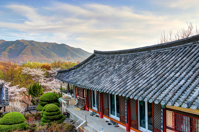 Daegu Named New 'Culture City of East Asia' for S. Korea