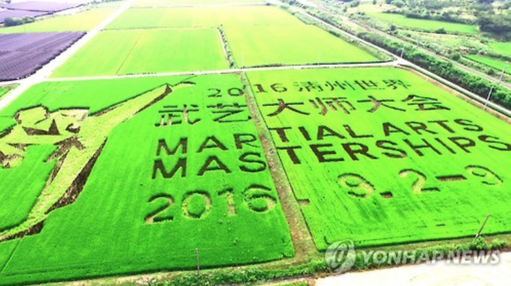 Some 16,000 square meters of farmland in Cheongju is turned into a signboard for a martial arts festival on Aug. 17, 2016. (image: Yonhap)