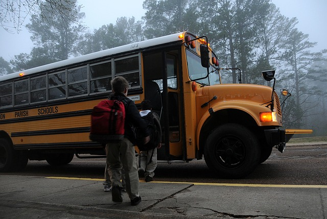 The reasons for the surge in violations are the police crackdown on school bus safety that started in October 2015, and new traffic safety laws that came into effect in January 2015 after a 3-year-old girl was killed by a school bus two years ago. (image: Pixabay)