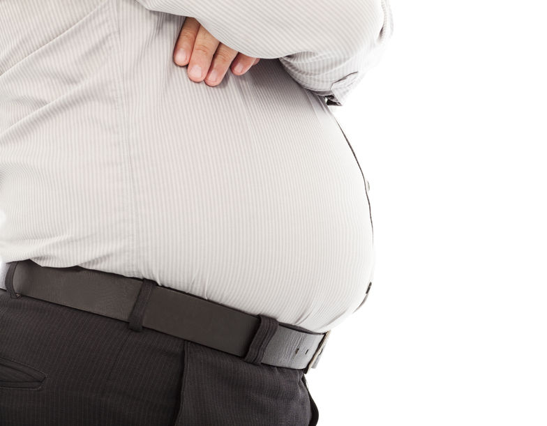 According to the congress, obesity now serves as the third highest social burden after smoking, and war and terror, on a global level. (image: KobizMedia/ Korea Bizwire)