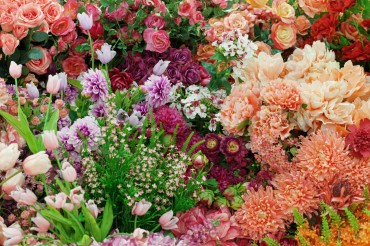 Anti-Graft Law Hits Flower Sales Hard