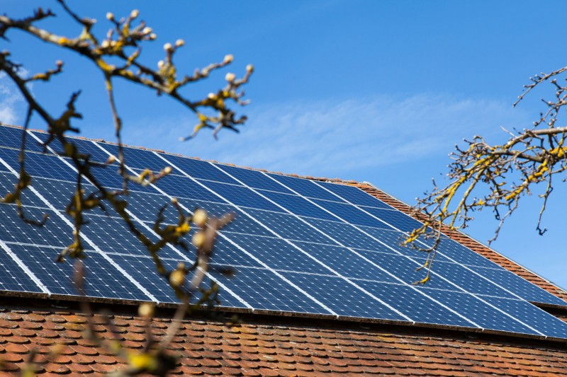 More Homes Have Solar Panels to Save on Electric Bills