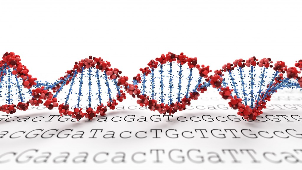 The research team decided to construct a Korean-specific reference genome, which would help the future study of diseases that Koreans tend to develop more frequently than other ethnic groups. (image: KobizMedia/ Korea Bizwire)