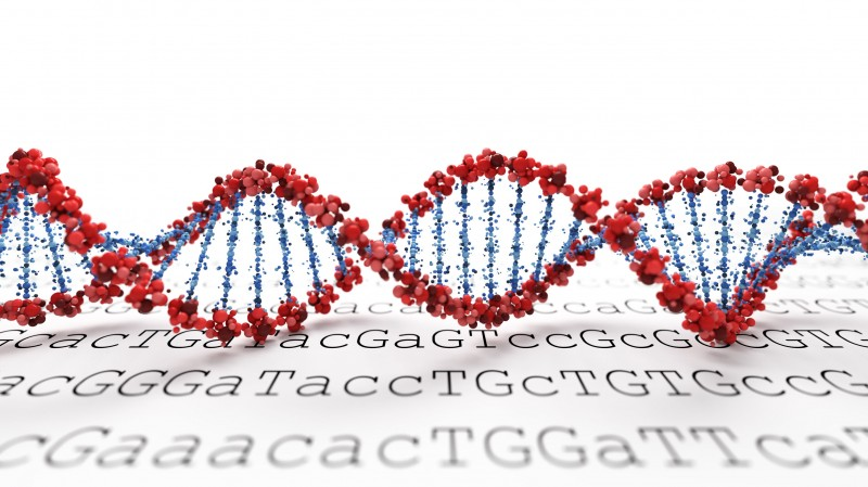 Scientists Complete Korean-Specific Reference Genome