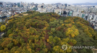Seoul's City Park of Royal Tombs Finds Autumn Colors