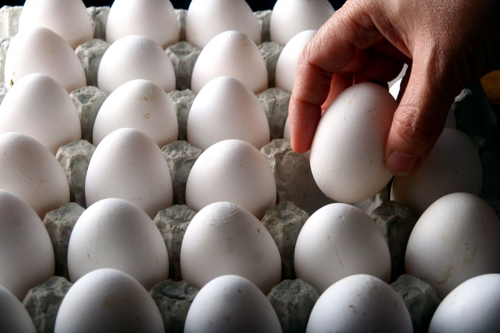 Industry officials say that although there is no critical shortage or stockpiling of eggs taking place, the growing severity of the AI outbreak is leading to a partial shortage. (image: KobizMedia/ Korea Bizwire)