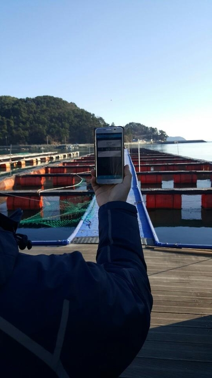 The system's biggest advantage lies is in its convenience, allowing farm owners to use smartphones to monitor water temperature and dissolved oxygen levels, as well as feeding the animals. (image: Yonhap)