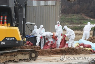 S. Korea Culls 9.81 Million Poultry over Bird Flu