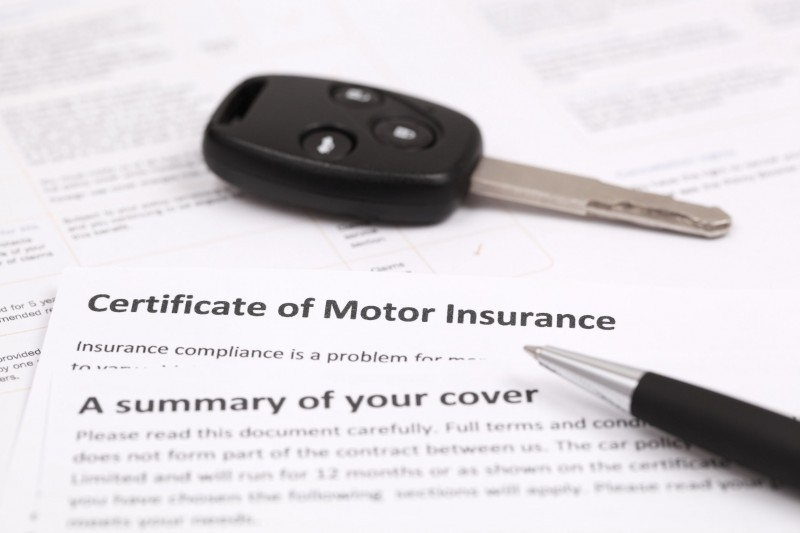 Insurance Comparison Website Offers More Vehicle Options