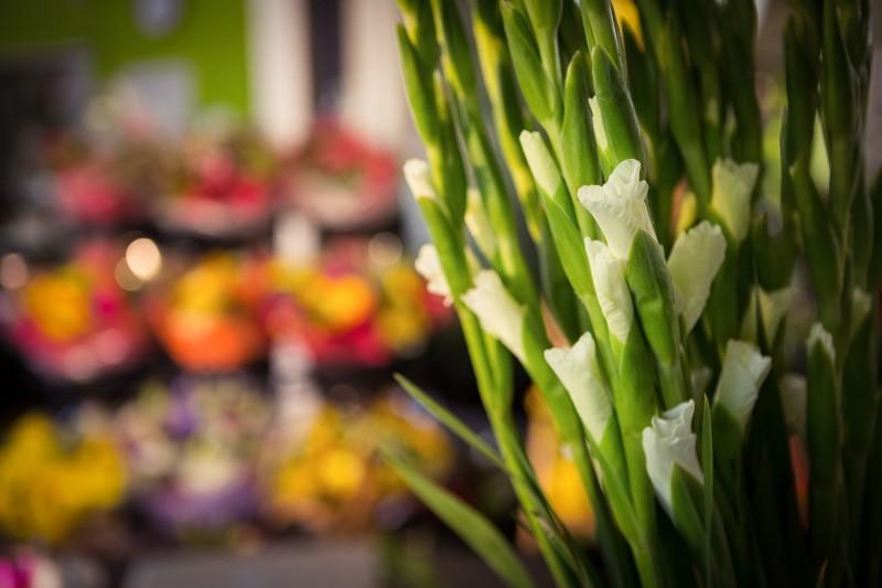Florists, Flower Farmers Feeling the Pinch of Anti-Corruption Law