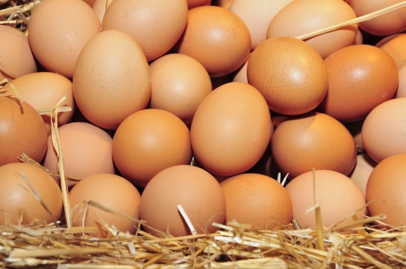Egg Prices Soar, but Imports Unlikely