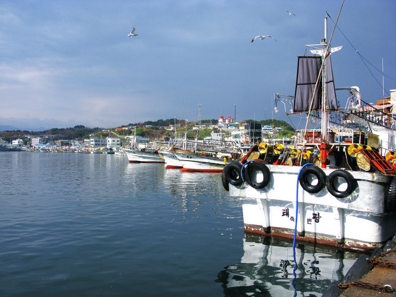 South Korea's offshore fisheries production had been on the wane since peaking at 1.73 million tons in 1986. (image: KobizMedia/ Korea Bizwire)