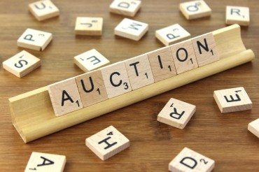 Popularity of Government's Public Auction Website Soars