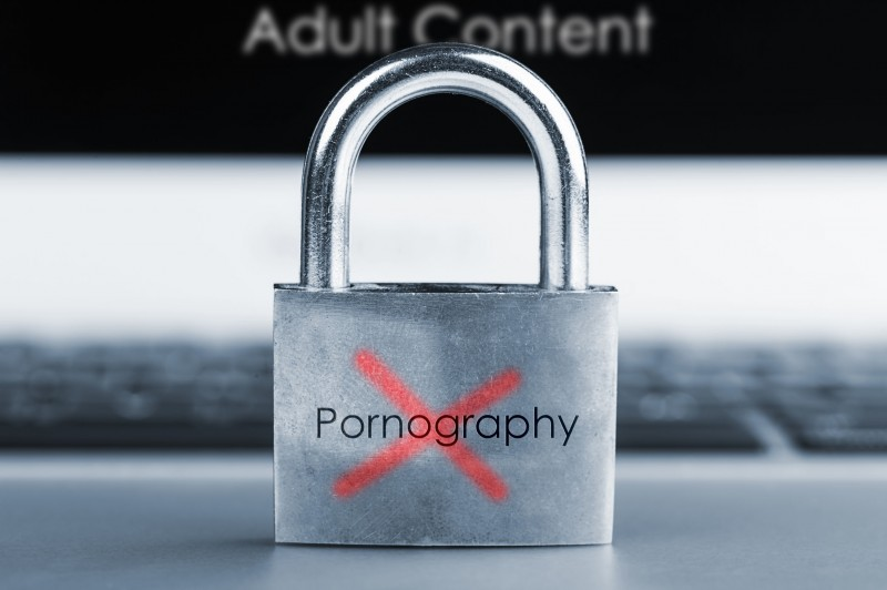 Elementary Students' Adult Video Consumption Rate Doubled: Survey