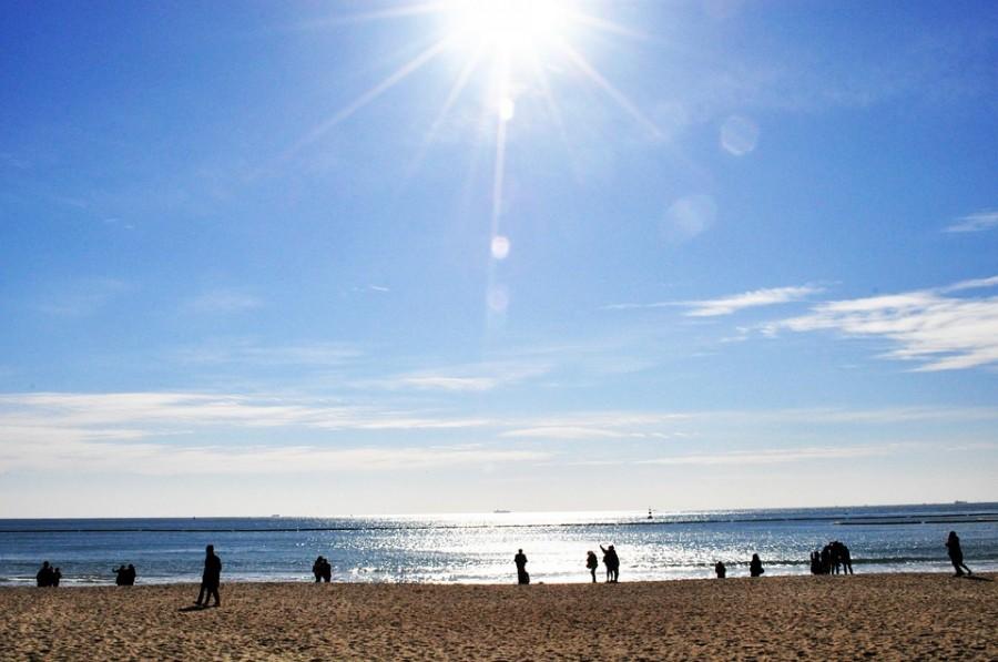 'Radio and Book Café' Coming to Haeundae Beach Next Month