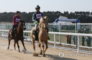 Jeju Hosts Horse-Riding Marathon