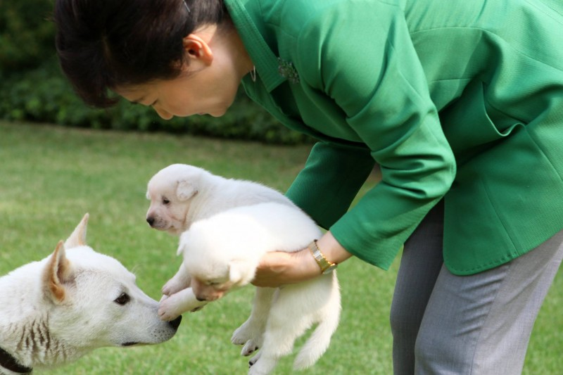 Animal Rights Group Reports Ousted President to Police for Abandoning Dogs