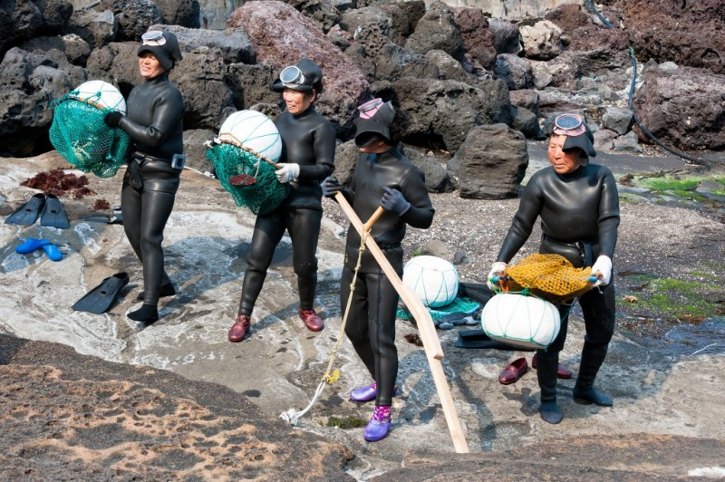 New Association of Jeju Female Divers to Preserve 'Haenyeo' Culture