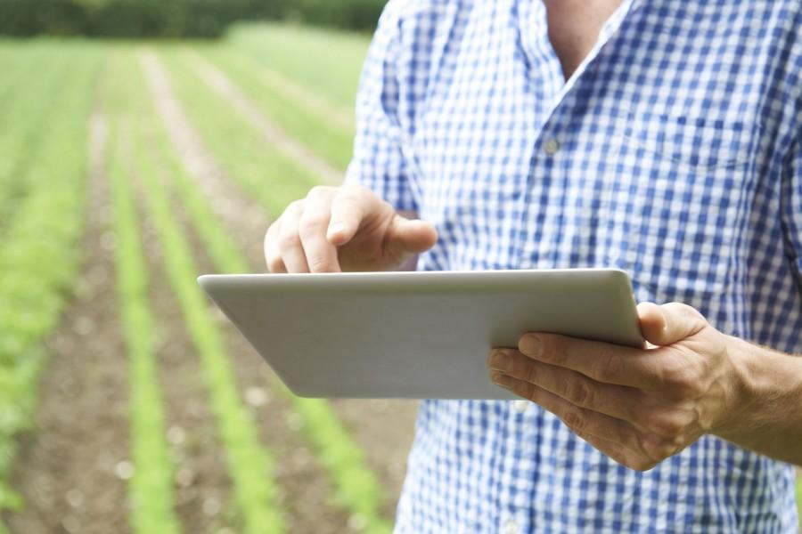 Chungju's Smart Farming Technologies Bear Fruitful Results