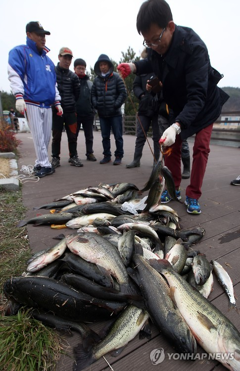Basses. (image: Yonhap, not related to this article)