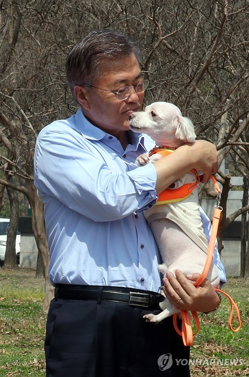 Moon visited a pet playground near Seoul World Cup Stadium on Sunday, where he emphasized the importance of animal policies in South Korea, which now has 10 million pet owners. (image: Yonhap)