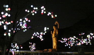 9,000 Paper Lanterns Light up Local Temple for Buddha's Birthday
