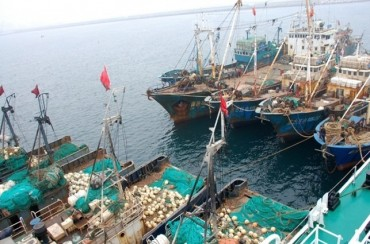 Squid Catch Has Fallen Sharply Since 2004 amid Rise in Chinese Fishing Boats: Data