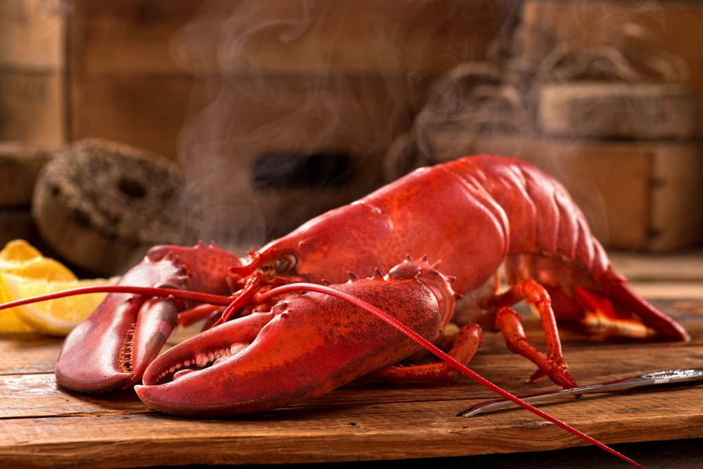 """""""American lobsters are less popular than Canadian products due to less meat and local consumers and restaurants were deceived by the label changes."""" (image: KobizMedia/ Korea Bizwire)"""