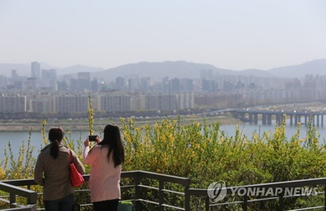 According to research findings from the Rural Development Administration, East Indian fig trees, for instance, can reduce the ultra-fine dust particles that are the main cause behind grey haze in the sky by 67 percent in four hours when put in an empty room. (Image: Yonhap)