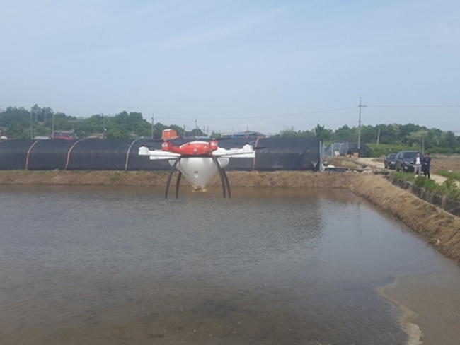 The agricultural technology center in Asan, a city in South Chungcheong Province, was able to trial direct seeding of rice over an area of 120,000 square meters with the help of drones, the center said yesterday. (Image: Asan Agricultural Technology Center)