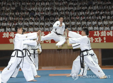 Taekwondo Exchange Between Koreas Expected to Resume