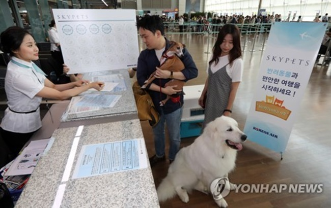 According to the government's data, pets are raised in more than 20 percent of the country's households, or about 4.5 million.(Image: Yonhap)